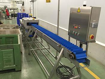 Fabricación de línea de proceso de corte de mazorcas de maíz, para industria alimentaria_3.