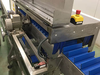 Fabricación de línea de proceso de corte de mazorcas de maíz, para industria alimentaria_2.