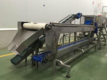 Fabricación de línea de proceso de corte de mazorcas de maíz, para industria alimentaria_1.